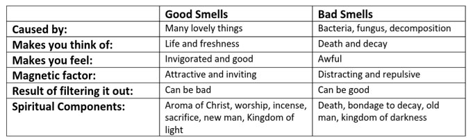 Good smell bad smell